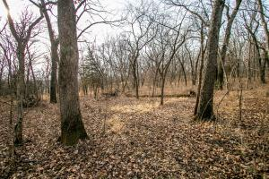 Secluded Build Site & Acreage in Eudora  in Douglas, KS (26 of 54)