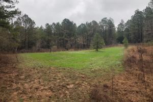 Flat Rock Hunting Grounds - Benton County MS