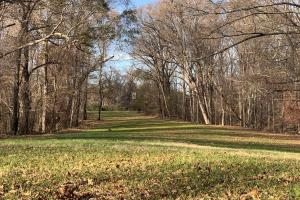 Beautiful Yazoo City Hardwood Property
