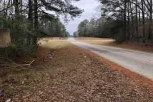 McCool Timber Investment & Hunting - Attala County MS