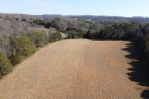 County Road McMinn County Acreage - McMinn County, TN