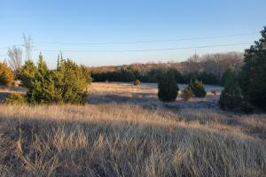 Wylie Tract with Development Potential - Collin County, TX