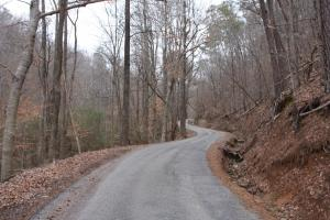 Bremen Timber and Hunting Tract - Walker County, AL