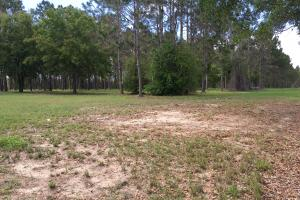 13.15 Acres for Mixed-Use Commercial off Hwy 27 in Polk, FL (9 of 9)