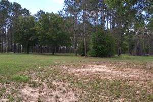 13.15 Acres for Mixed-Use Commercial off Hwy 27 in Polk, FL (2 of 9)