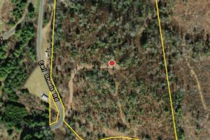 Ashe County Hunting Tract 2 - Ashe County, NC