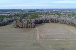 Hinnant-Edgerton Road Farmland & Timberland - Johnston County NC