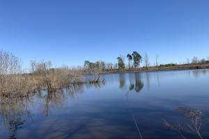 Fish Pond Next To Impoundments (59 of 65)