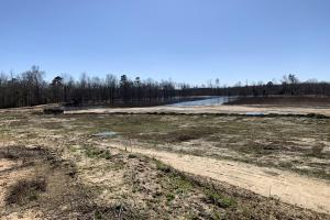 Partially Drained Impoundment: Green Tree In Background (60 of 65)