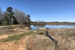 Fish Pond With Impoundments In The Background (65 of 65)