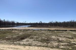 Partially Drained Impoundment With Green Tree In Background (62 of 65)
