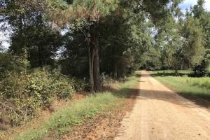 Hunting Property With Fixer House Between Carthage and Philadelphia, MS - Neshoba County MS