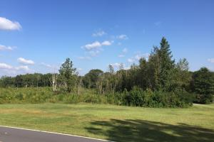 Temple City Limits Development Opportunity - Carroll County, GA