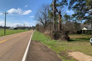 Little Sipsey Creek Hunting and Investment Property With Homesites and Frontage on Highway 492 - Newton County MS
