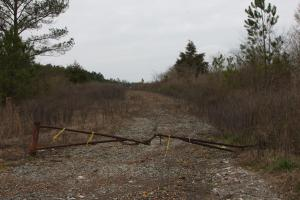 Carbon Hill Development and Recreational Tract - Walker County, AL