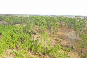 Alligator Bayou Estates Homesite B - Mobile County, AL