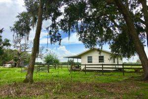Rockridge Hideaway Ranch - 82 Acres - Polk County, FL