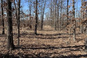 Mounds Homesite with View - Creek County, OK
