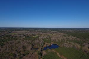 86 Acre Recreational Tract/ Homesite - Trinity County, TX