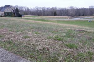 Corner Home Site in Subdivision Near Watts Bar lake - Roane County, TN