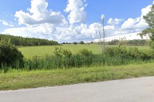 I-4 Corridor Vacant Land in Polk, FL (4 of 6)