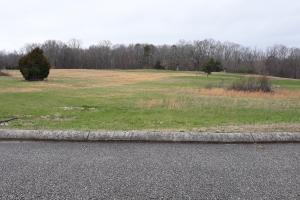 Building Lot in Pond Meadows Estates - Roane County, TN