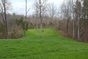 Large Acreage Hunting/Recreational or Private Home Site - Pickens County, GA