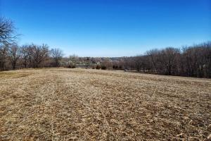 Murray Road Acreage 1 - Cass County, NE