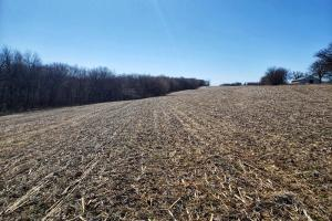 Murray Road Acreage 2 - Cass County, NE