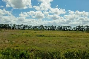 Range Line Road Ranch - Saint Lucie County, FL