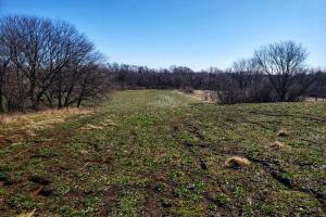 Murray City Limits Acreage - Cass County, NE