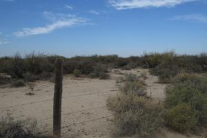 San Simon 180 acre Parker Rd Ranch - Cochise County, AZ
