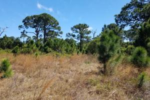Five Ft. Pierce Residential Lots - Saint Lucie County, FL
