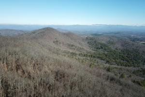 Sunny Point Road  Timber Tract - Cherokee County, NC