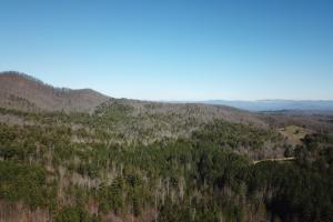 64.17 AC Sunny Point Road Timber Tract - Cherokee County, NC