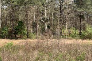 Old Liberty Road Lot - Pickens County, SC
