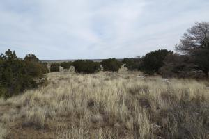 Fence Lake Unit 12 CR 35D Elk, Cattle Ranch - Cibola County, NM