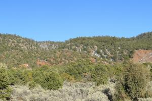 Cuba large acreage Elk and views - Sandoval County, NM