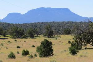 Unit 15 Pie Town 360 acres Elk Hunting Ranch - Catron County, NM