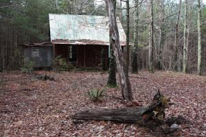 Sal Branch Timber/Recreational Tract With Cabin - Walker County, AL