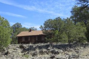 Unit 13 Non-Coer Elk Hunting Property - Cibola County, NM