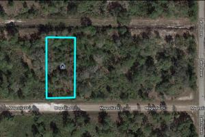 Residential Lot Indian Lake Estates - Polk County, FL