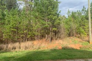 Hunting Homesite Between Milledgeville and Macon