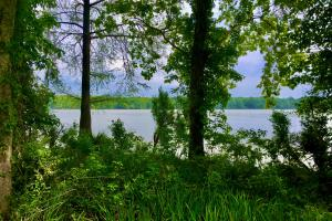 Riverview Landing Homesite A - Wilcox County, AL