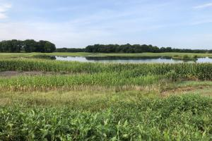 Waterfowl Haven with Income - Nemaha County, NE