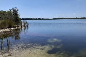 Hornet Lake in Canaveral Groves in Brevard County, FL (16 of 37)