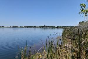 Hornet Lake in Canaveral Groves in Brevard County, FL (7 of 37)