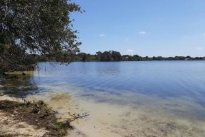 Hornet Lake in Canaveral Groves in Brevard County, FL (19 of 37)