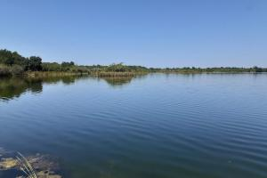 Hornet Lake in Canaveral Groves in Brevard County, FL (6 of 37)