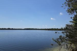 Hornet Lake in Canaveral Groves in Brevard County, FL (24 of 37)